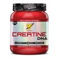 BSN - Creatine DNA