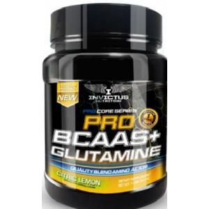 InvictusNutrition - BCAA+Glutamine 500gr.