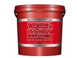 Scitec - Whey Protein Professional 5000gr.